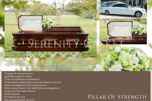 Pillar-of-strength-New-PACKAGE-website